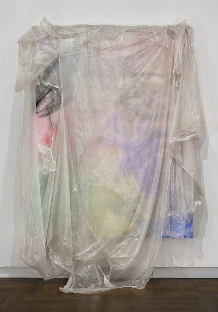 David Hammons, Untitled