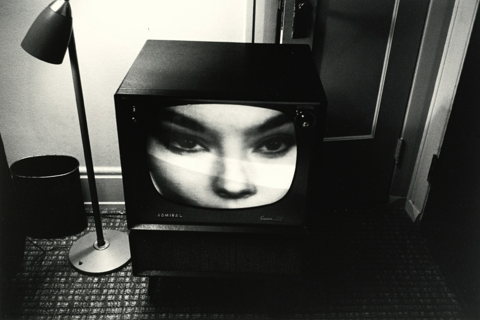 Lee Friedlander, The Little Screens